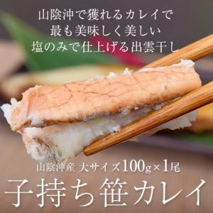 山陰沖産 子持ち笹カレイ 大サイズ 100g×1尾 ※冷凍 sea○ tsukijiichiba