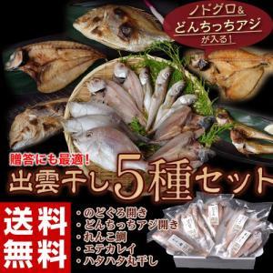 お中元 ギフトにも!ノドグロ&どんちっちアジが入る!出雲干し5種セット ※冷凍 送料無料 tsukijiichiba