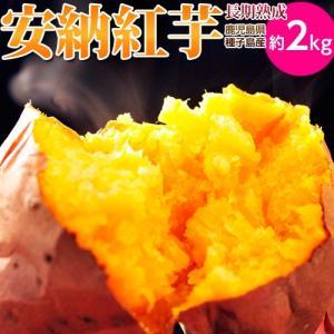 安納芋 送料無料 種子島産 循環型農法「安納紅芋」 正規品 約2kg|tsukijiichiba