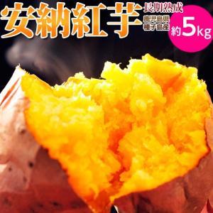 安納芋 送料無料 種子島産循環型農法「安納紅芋」 正規品 約5kg|tsukijiichiba