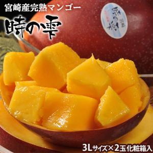 宮崎産完熟マンゴー『時の雫』 3Lサイズ 450g〜509g×2玉 化粧箱入 送料無料 tsukijiichiba