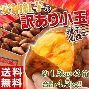 《送料無料》種子島産 「安納紅芋」 小玉 約1.5キロ※3箱...