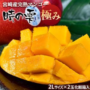 《送料無料》宮崎産完熟マンゴー『時の雫《極み》』2Lサイズ(...