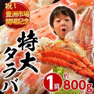 かに カニ 蟹 タラバガニ タラバ蟹 たらば蟹 たらばがに 約800g×1肩 2人前相当 ボイル 特大タラバガニ 冷凍 送料無料|tsukijiichiba