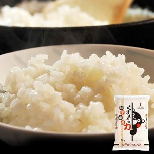 《送料無料》熊本県産 『くまさんの力』 白米 5kg ※常温○|tsukijiichiba
