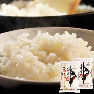 《送料無料》熊本県産 『くまさんの力』 白米 10kg(5kg×2袋)※常温○|tsukijiichiba