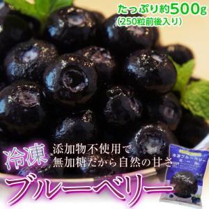 アメリカ産『冷凍ブルーベリー』約500g ※冷凍 【冷凍同梱可能】frt○|tsukijiichiba