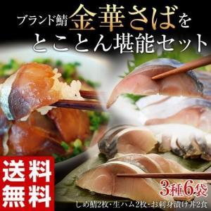さば サバ 鯖 金華さば 宮城県 ブランド鯖 金華さばをとことん堪能セット 3種6袋 送料無料 冷凍