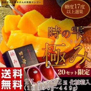 母の日ギフト 《母の日ギフト》宮崎産完熟マンゴー『時の雫《極み》』 2Lサイズ 350g〜449g×2玉 メッセージカード・化粧箱入 送料無料 tsukijiichiba