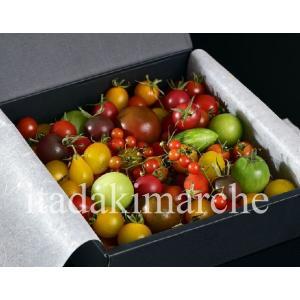 フルーツトマト ギフト おかざき農園 ミニトマトアソート プティリサ・ジュエルボックス 700g以上 化粧箱 冷蔵|tsukijiichiba