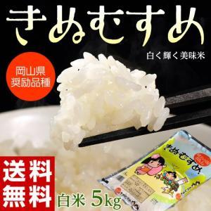 《送料無料》岡山県産米 「きぬむすめ」 白米 5kg 1袋 ※常温・産直 ○|tsukijiichiba