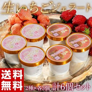 アイス 氷菓 苺 イチゴ 『生いちごジェラート』 白いちご・さがほのか 2種 各3個 合計6個セット 1個:110ml 冷凍 送料無料 tsukijiichiba