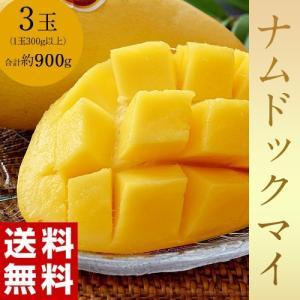 タイ産 マンゴー ナムドックマイ 3玉(合計約900g)送料無料 tsukijiichiba