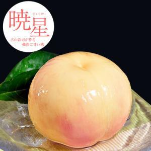 古山浩司の暁星(ぎょうせい) 福島県産 特秀品 約2kg(6〜8玉)  古山果樹園 桃 もも 常温 産地直送 送料無料 ギフト 贈り物|tsukijiichiba