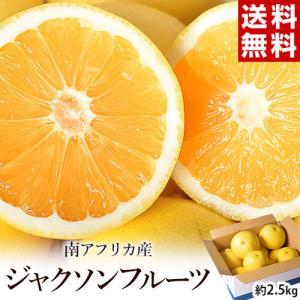 送料無料『ジャクソンフルーツ』 南アフリカ産 約2.5kg 目安として9〜16玉入り|tsukijiichiba