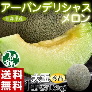 青森県産 つがりあんメロン アーバンデリシャス 秀品 大玉1玉 約1.3kg 送料無料 常温 産地直送|tsukijiichiba