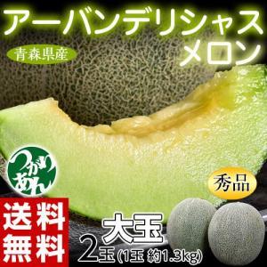 青森県産 つがりあんメロン アーバンデリシャス 秀品 大玉2玉 (1玉約1.3kg)送料無料 常温 産地直送|tsukijiichiba