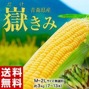 青森県産 『嶽きみ』 M〜2Lサイズ 無選別 約3kg(8〜13本) ※冷蔵 送料無料