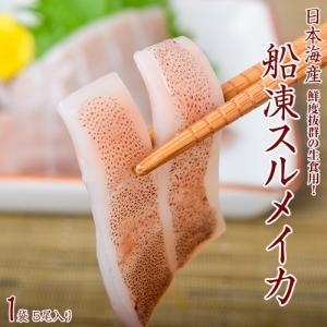 いか イカ 刺身 船凍スルメイカ 日本海産 生食用 1袋5尾入り(ラウンド1尾115g〜130g)冷凍 同梱可能|tsukijiichiba