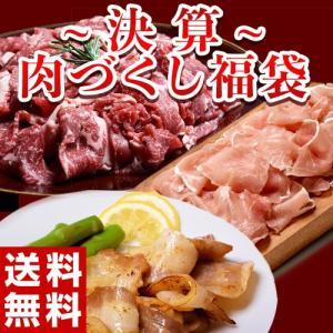 《送料無料》『決算 肉づくし福袋』 全3品 総重量2.5キロの大ボリューム ※冷凍 ☆ tsukijiichiba