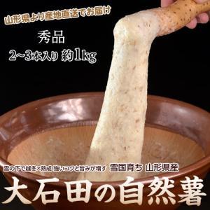 送料無料 山形県産大石田 雪下 自然薯 じねんじょ 秀品 1キロ(2〜3本入り) 産地直送 とろろ ご飯 同梱不可|tsukijiichiba
