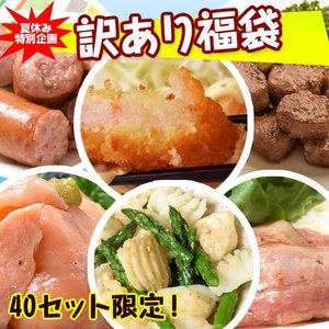訳あり 食品 福袋 2018年 夏 全6種7品 大容量2.7キロ アウトレット 送料無料 冷凍|tsukijiichiba