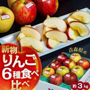 りんご 送料無料 青森県産りんご6品種食べ比べセット(6〜13玉入)約2.5kg 岩木山りんご生産出荷組合|tsukijiichiba