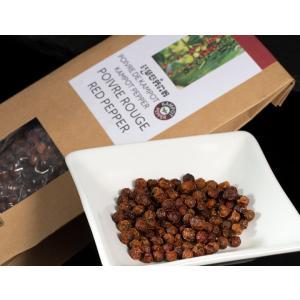 カンポットペッパー 赤粒胡椒 50g カンボジア産 ※常温 送料無料 ネコポス|tsukijiichiba