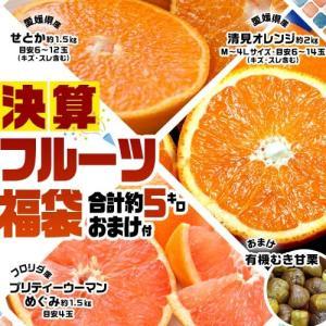 柑橘 せとか しらぬひ サンふじ 芋けんぴ 決算フルーツ3種福袋+おまけ 合計約5.5kg 送料無料
