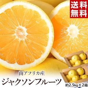 柑橘 ジャクソンフルーツ 南アフリカ産 約5kg(目安として20〜30個程度) グレープフルーツ 送料無料|tsukijiichiba