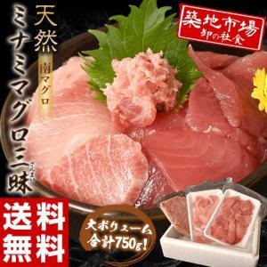 鮪 まぐろ ミナミマグロ インドマグロ 天然南マグロざんまい 3種合計750g(中トロ・赤身 250g 大トロ 250g ネギトロたたき 250g) 送料無料|tsukijiichiba