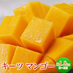 《送料無料》沖縄県産 キーツマンゴー(多少の訳あり) 2〜5...