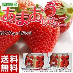 いちご イチゴ 福岡県産 あまおう G(グランデ) 約270g×4P 送料無料 tsukijiichiba