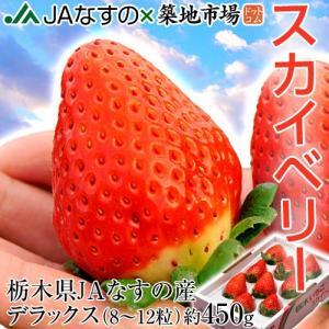 いちご 栃木県産 「スカイベリー」 1箱 DX(デラックス)約450g(8〜12粒) ※冷蔵 frt ☆|tsukijiichiba