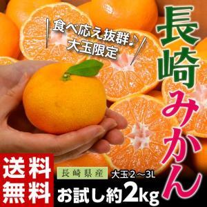 《送料無料》長崎県産 大玉みかん 2〜3L 約2kg ※常温 frt ☆|tsukijiichiba