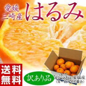 《送料無料》愛媛・三崎産 訳あり「はるみ みかん」 約2.5...