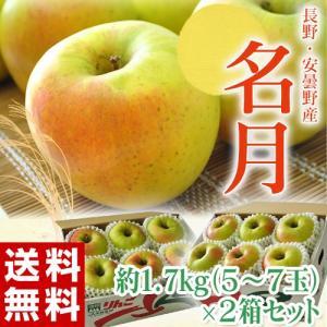 りんご リンゴ 林檎 長野県・安曇野産「名月りんご」2箱 (1箱:5〜7個入り 約1.7kg)送料無料|tsukijiichiba