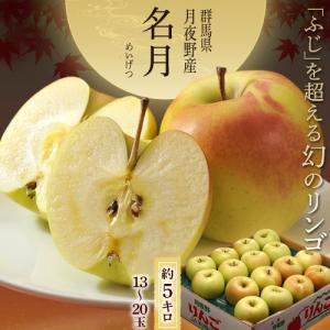 りんご リンゴ 林檎 群馬 月夜野産 ぐんま 名月 13〜20玉 約5キロ 送料無料|tsukijiichiba