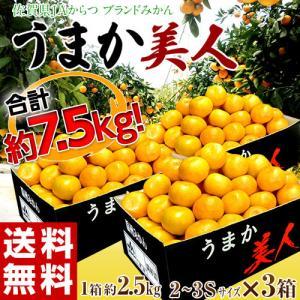 高糖度みかん みかん 佐賀県産 JAからつ うまか美人 約2.5kg×3箱 2S〜3Sサイズ 送料無料|tsukijiichiba