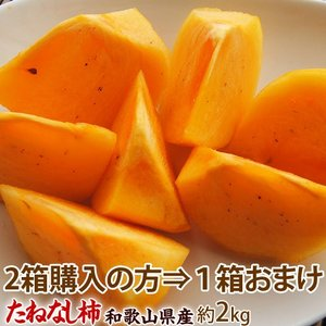 【2箱購入の方は3箱でお届け】送料無料 和歌山県産 ちょっと傷あり 「たねなし柿」 約2kg(1箱:10〜12玉入) 豊洲市場