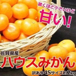 佐賀県産 訳あり4Sサイズ「ハウスみかん」約2kg ※常温 frt ☆|tsukijiichiba