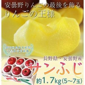 送料無料 りんご リンゴ 林檎 長野・安曇野産 『サンふじ』 約1.7kg(5〜7玉)|tsukijiichiba