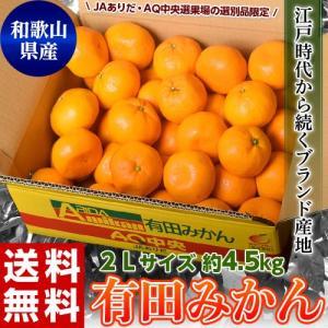 《送料無料》和歌山県産 有田みかん 2Lサイズ 約4.5キロ ※常温 frt ☆|tsukijiichiba