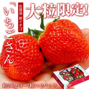佐賀県産 「いちごさん」等級:XL 1箱:約240g(5〜7粒)×2パック|tsukijiichiba