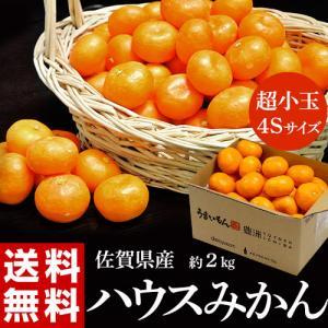 『ハウスみかん』 佐賀県産 JAからつ 約2kg(目安として60〜64玉) 超小玉 4S 簡易包装 ...