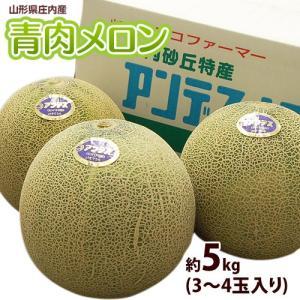 メロン めろん 青肉メロン 大玉 山形県産 約5kg 3〜4玉 送料無料|tsukijiichiba