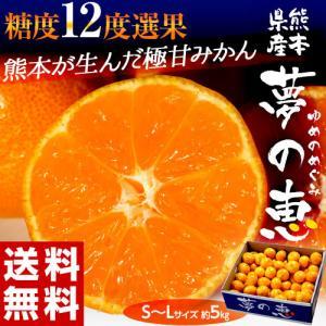みかん ミカン 蜜柑 柑橘 糖度12度以上 熊本県 夢の恵 約5kg Sサイズ 送料無料 常温|tsukijiichiba