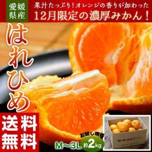 オレンジ みかん ミカン 蜜柑 柑橘 愛媛県産 はれひめ お試し用 約2kg M〜3L 送料無料 tsukijiichiba