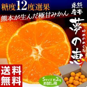 みかん ミカン 蜜柑 柑橘 糖度12度以上 熊本県 夢の恵 お試し 約2kg Sサイズ 送料無料 常温 tsukijiichiba