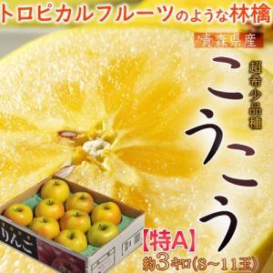 りんご 林檎 リンゴ 青森県産 こうこう林檎 約3kg 8〜11玉 特A ※3箱まで送料1口で配送|tsukijiichiba